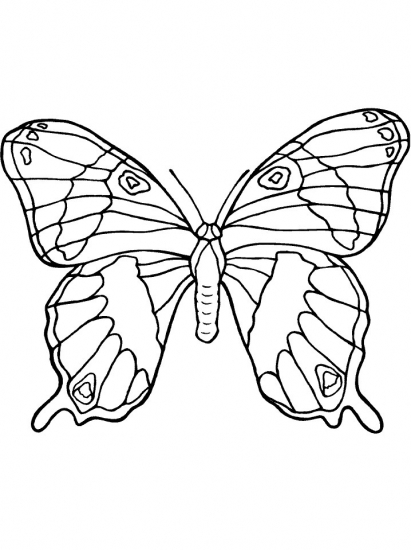 normal princess coloring pages | Butterflys and Bugs - butterfly02 - Coloring Pages