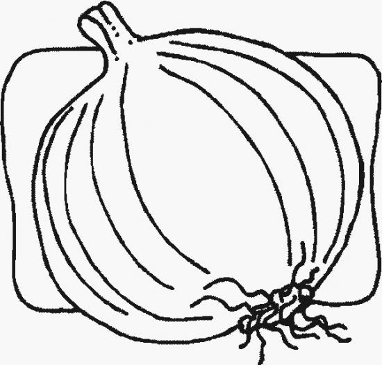 玉ねぎのぬりえ(塗り絵)イラスト素材画像集