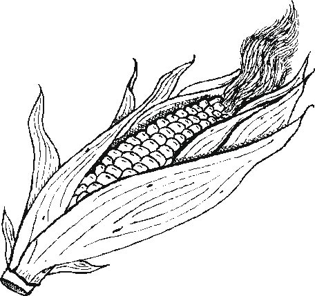coloring pages of corn - garden corn coloring pages