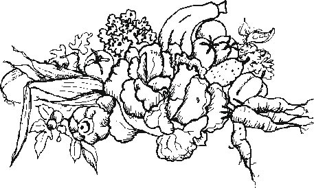 Coloring Pages Of Garden Vegetables | freecoloring4u.com